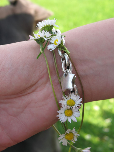 daisy-chains